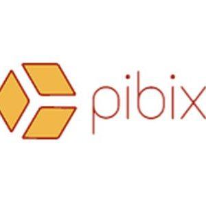 pibix 350